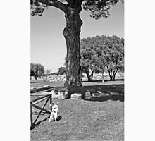 Paestum: archaeological site with dog Unisex T-Shirt