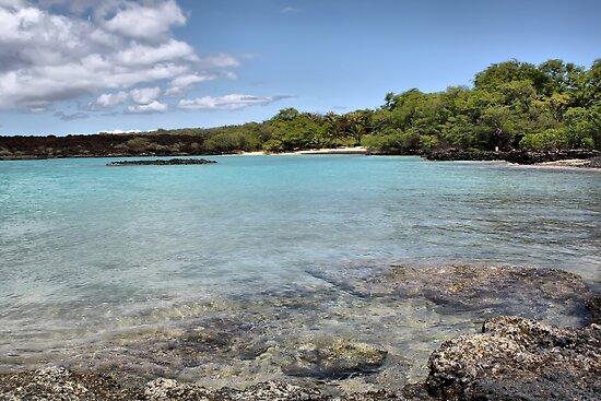 La Perouse Bay, Maui, Hawaii by Teresa Zieba