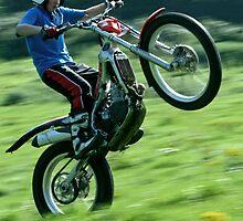 Wonderous Wheelie'ing by DaveMont