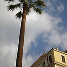 Tall trees and rooftops by angelfruit
