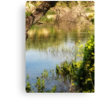 The Calm & Sun after the Storm Canvas Print