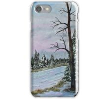 Winter Serenity  SOLD iPhone Case/Skin