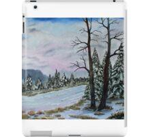 Winter Serenity  SOLD iPad Case/Skin