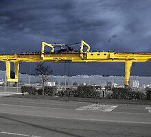 Rain Crane by digitaldavers