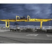 Rain Crane Photographic Print