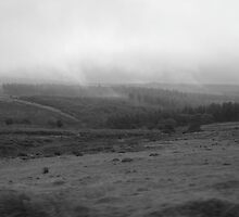 Dark and Dastardly Dartmoor by NicolaLeigh