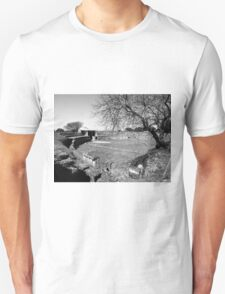 Paestum: archaeological site theater Unisex T-Shirt