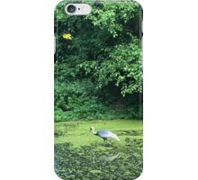 Standing Bird iPhone Case/Skin