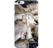 an awful lot of fungi iPhone Case/Skin