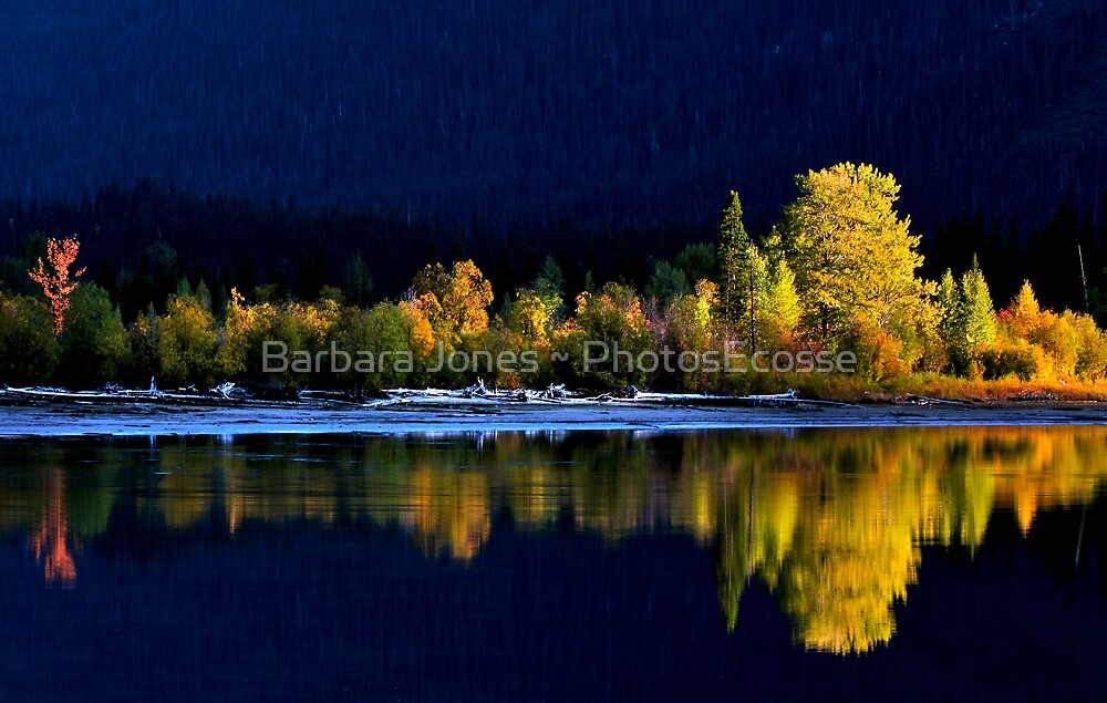 Moose Lake, reflections, in fall. Jasper National Park, Alberta, Canada. by PhotosEcosse