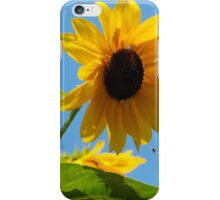 Seneca Lake Sunflower < iPhone Case/Skin