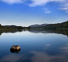 Esthwaite Shore by Ross Larner