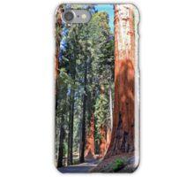 Sequoia Drive iPhone Case/Skin