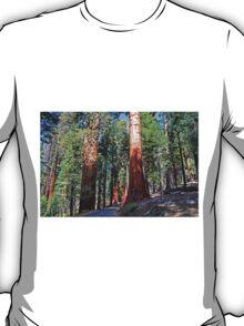 Sequoia Drive T-Shirt