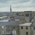 building tops in Limerick by Mardra