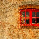Texture by Farras Abdelnour