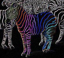 rainbow zebra by sarah-and-ash