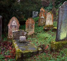 Graveyard (St. Just-In-Roseland) by mariarty