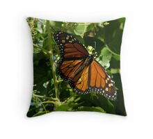 Painted Wings... Throw Pillow