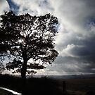 November Country Lane by CreativeEm