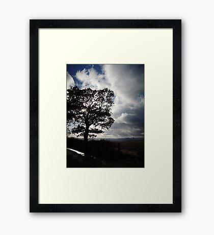 November Country Lane Framed Print