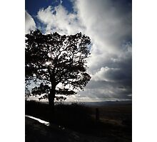 November Country Lane Photographic Print