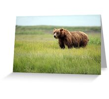 Walking With the Brown Bears in Hallo Bay Greeting Card
