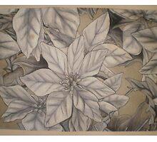 Wreath Segment by Nathan Poston