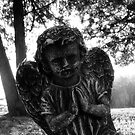 Cemetary Angel by TLWhite