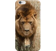 Lion - Male iPhone Case/Skin