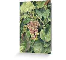 Winery Tour Greeting Card