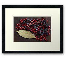 Spice Berries Framed Print