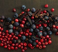 Different spice berries  by Zosimus