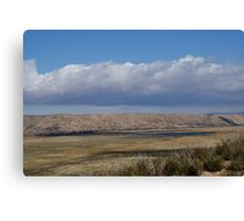 Pasture in the desert Canvas Print