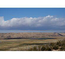 Pasture in the desert Photographic Print