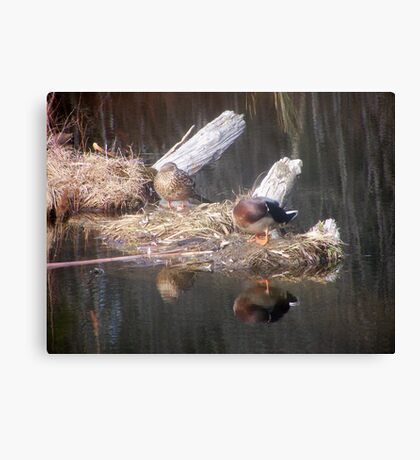 Reflections Of Us Canvas Print