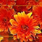 Fall Mums by vigor