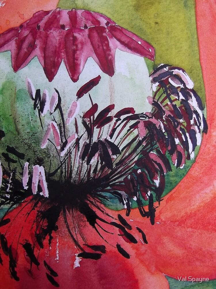 Oriental Poppy by Val Spayne