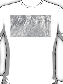 skin of the moutain T-Shirt
