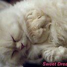 Sweet Dreams by trisha22