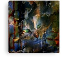 Cat Glancing Canvas Print