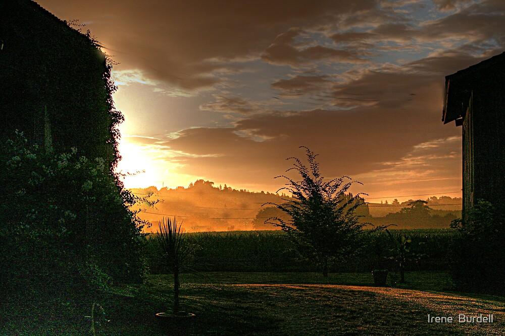 Early Morning  La Reole . by Irene  Burdell
