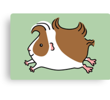Leaping Guinea-pig ...Brown and White Canvas Print