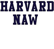 Harvard Naw by koleson