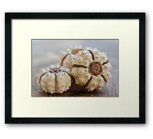 Sputnik Sea Urchin Framed Print