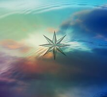 wind rose by M J