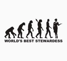 Evolution world's best stewardess by Designzz