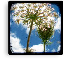 True Happiness This Way Lies - (TTV) Canvas Print
