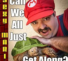 SexyMario MEME - Can We All Just Get Along? by SexyMario