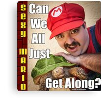 SexyMario MEME - Can We All Just Get Along? Canvas Print